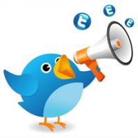 twitter-megaphone-bird-promotion-ideas
